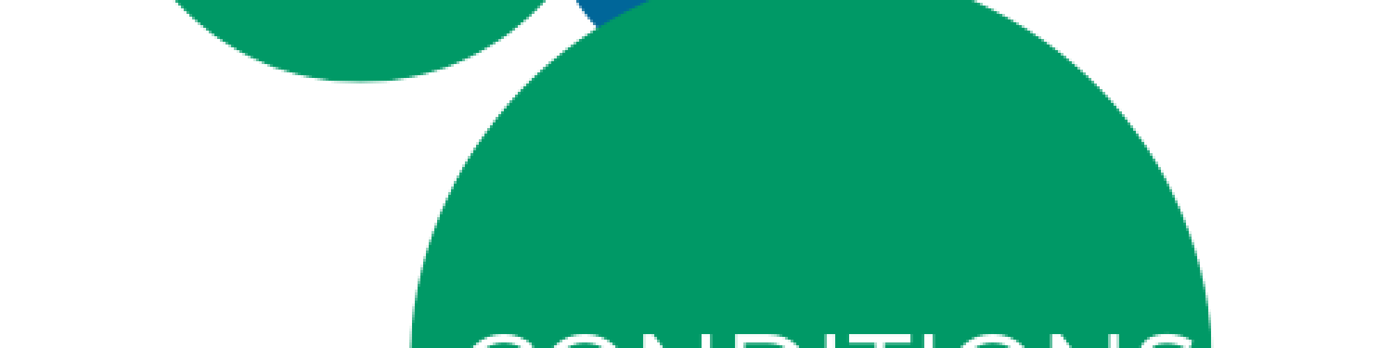 Terms & Conditions for the website of Ros Boundy